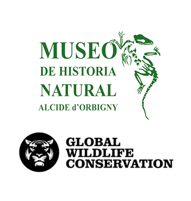 Logo Museo-Global