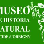 Museo nuevo LOGO verde